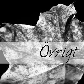 ovrigt