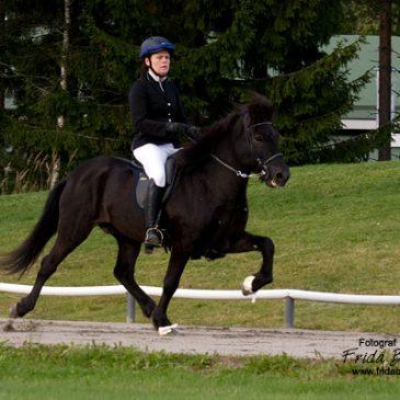 Vill du bli fotograferad under Kraftur Islandshästförenings tävlingar?
